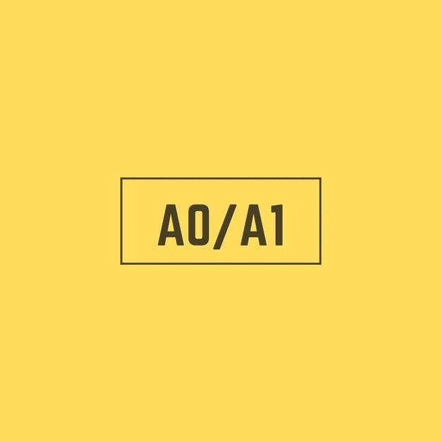 Spanish A0A1 Course