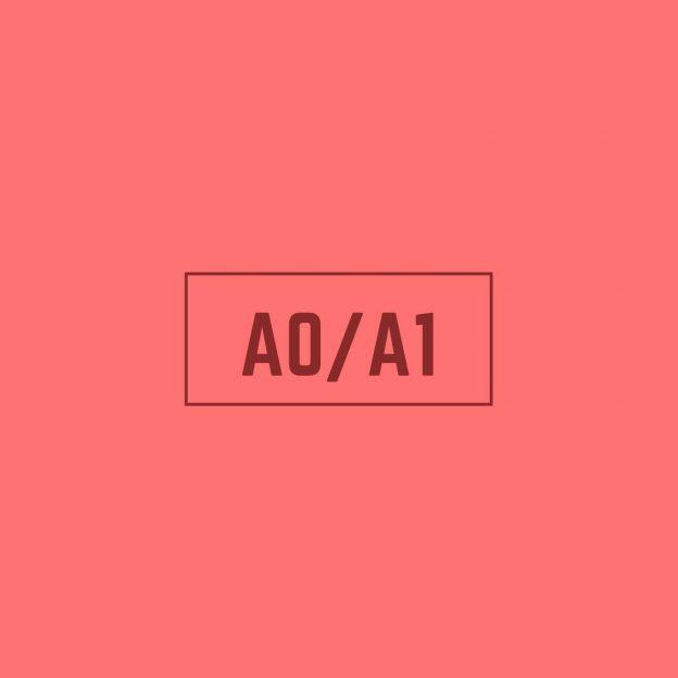 Spanish A0-A1 Course