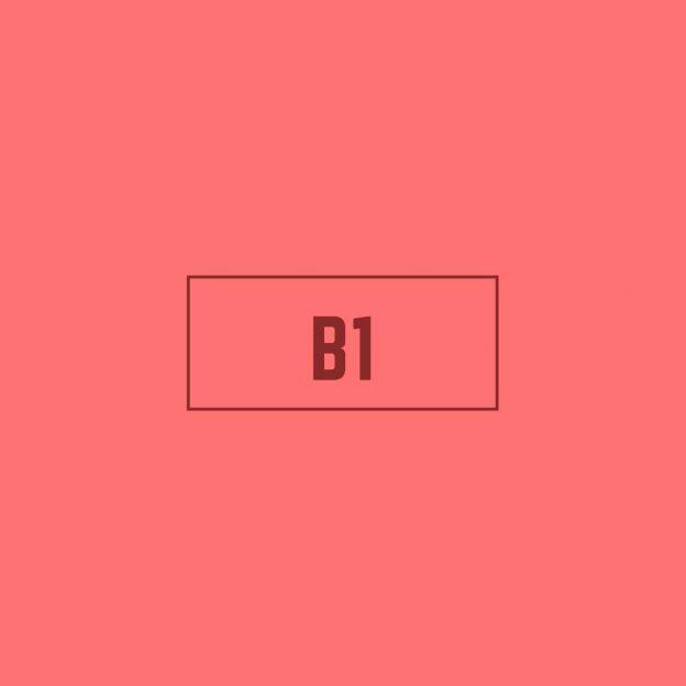 Spanish B1 Course