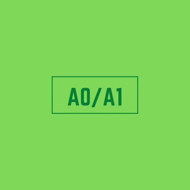 Latin American Spanish A0A1 Course